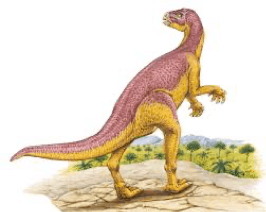 Xiaosaurus Pictures & Facts - The Dinosaur Database