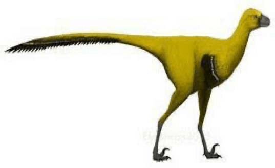 Xinjiangovenator Pictures & Facts - The Dinosaur Database